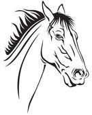 Paarden snuit — Stockvector