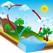 Water cycle. nature. Vector diagram — Stock Vector