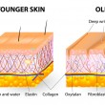 invecchiamento della pelle — Vettoriale Stock
