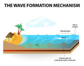 Wave formation mechanism — Stock Vector