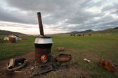 Mongolia — Stock Photo