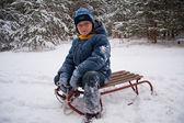 On sledge — Stock Photo