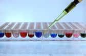 Pipetting sample — Stock Photo