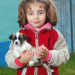 Little girl with her pet — Stock Photo