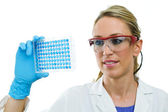 Young woman examining microplate — Foto Stock
