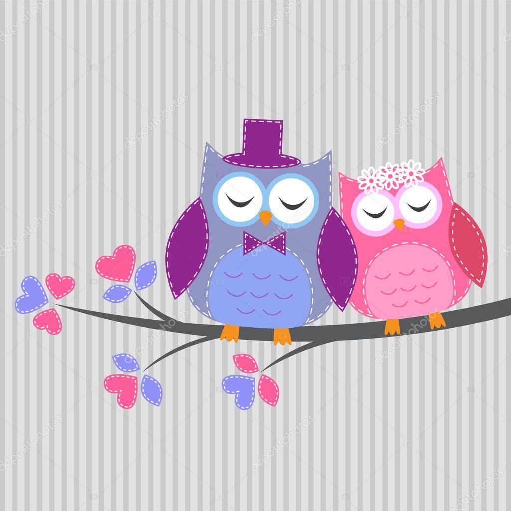 Love owl vector