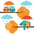 Couples of owls and birds autumn — Stock Vector