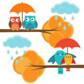 Coppie di gufi e uccelli autunno — Vettoriale Stock