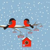 几个关于科罗恩与鸟笼 bullfinchs — 图库矢量图片
