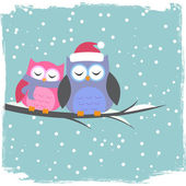 Winter card with cute owls — Vecteur