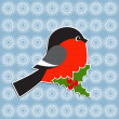 Bullfinch and Holly berry — Imagen vectorial