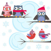 Owls and birds in winter forest — Vector de stock