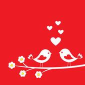 Dois pássaros bonitos — Vetor de Stock