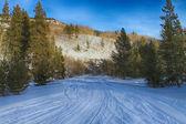 Snowmobile Tracks — Stock Photo
