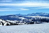 Colorado Mountain View — Stock Photo