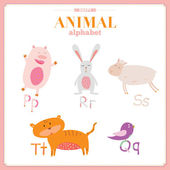 Funny and cute zoo alphabet . P, r, s, t, q letters. — Stock Vector