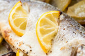 Cooked seabass — Stock Photo