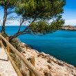 Costa Brava pathway — Stock Photo