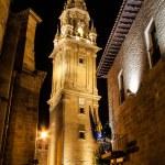 Santo Domingo de la Calzada — Stock Photo #30906243