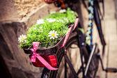 Hipster bike — Stock Photo
