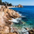 Stock Photo: Tossde Mar