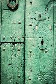 Green door. — Stock Photo