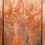 Rust door — Stock Photo #46255859