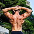 Stock Photo: Muscular bodybuilder's back with hands behind his head