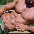 Stock Photo: Bodybuilder's torso, pecs, abs, leaning on side