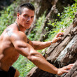 Handsome, muscular, shirless climber climbing rock wall — Stock Photo #30569255