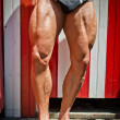 Close-up of muscular legs outdoors — Stock Photo
