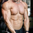 View of muscular torso of male bodybuilder in gym — Stock Photo