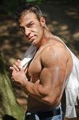 筋肉男のジーンズの木の下で野外で上半身裸 — ストック写真