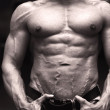 Close-up of muscular male torso, pecs, abs and arms — Stock Photo #38662001