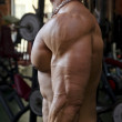Stock Photo: Mworking out at gym, side view of chest, pecs and arm