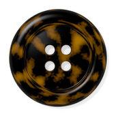 Tortoise Shell Button — Stock Photo