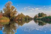 Reflections on lake — Stock Photo