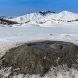 Mud Volcanoes in Buzau, Romania — ストック写真