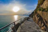 """Via dell amor"" of Cinque Terre — Stockfoto"