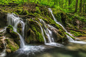 Beusnita stream — Stock Photo