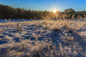 Sunrise in the winter — Stock Photo