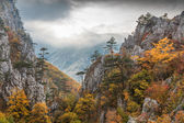 Tasnei Gorge, Romania — Stock Photo