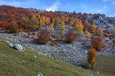 Góry mehedinti — Zdjęcie stockowe