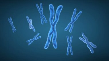 Chromosome x and DNA Strands — Stock Video
