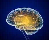 Brain impulses. Thinking prosess — Stock Photo