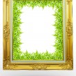 Old antique gold frame in background green grass over white back — Stock Photo