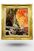 Old antique gold frame in background tree over white background — Stock Photo
