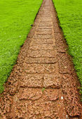 Garden path with grass growing up between the stones — Stock Photo