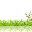 Green grass frame isolated on white background  — Foto Stock