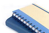 Blue note buch isoliert auf weißem hintergrund — Stockfoto